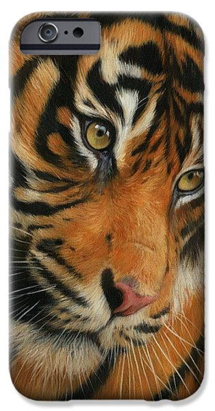 Portrait of a Tiger iPhone Case by David Stribbling