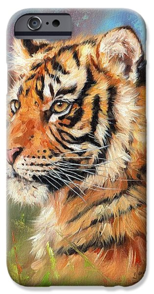 Young Paintings iPhone Cases - Portrait of a Young Amur Tiger iPhone Case by David Stribbling