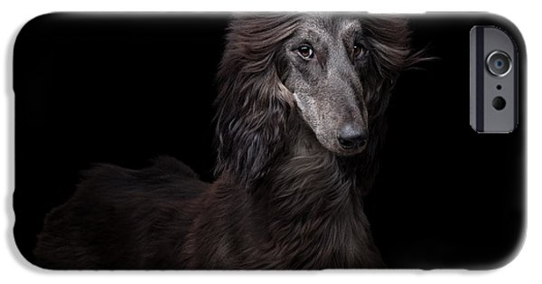 Black Dog iPhone Cases - Portrait of an Afgan  iPhone Case by Tanya Kozlovsky