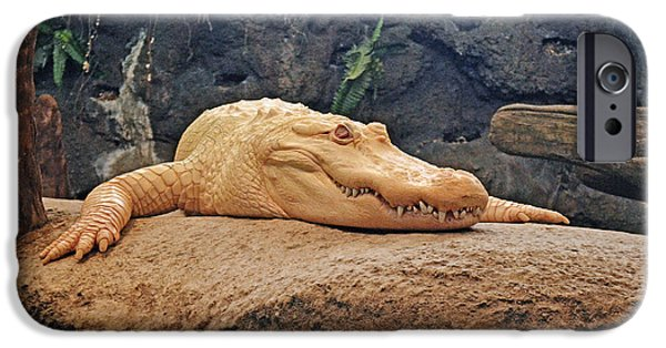 Strange iPhone Cases - Portrait of an Albino Alligator iPhone Case by Jim Fitzpatrick