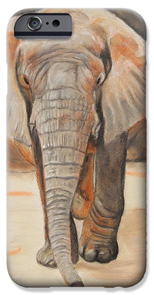 Elephants iPhone Cases - Portrait of an Elephant iPhone Case by Jeanne Fischer
