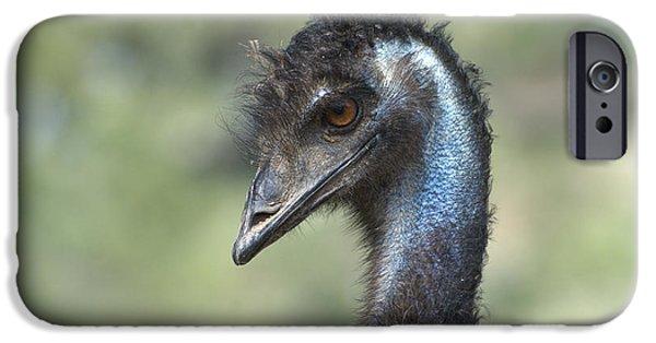 Emu iPhone Cases - Portrait Of An Emu iPhone Case by Fraida Gutovich