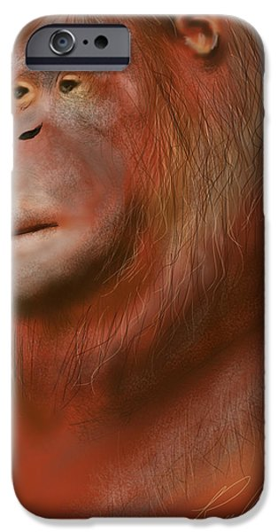 Orangutan Digital Art iPhone Cases - Portrait of an Orangutan - Drawn on the iPad iPhone Case by Ray Cassel
