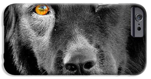 Dog Close-up Digital Art iPhone Cases - Portrait Of Mans Best Friend - The Eyes Have It iPhone Case by Aurelio Zucco
