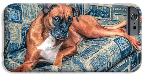 Puppy Digital iPhone Cases - Posing Boxer iPhone Case by Rob Sellers