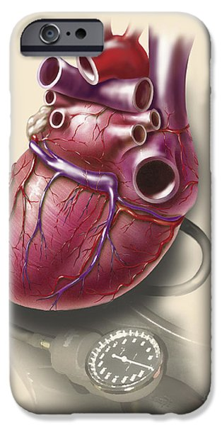 Airbrush iPhone Cases - Posterior View Of Human Heart On Photo iPhone Case by TriFocal Communications