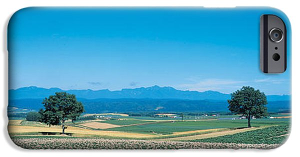 Crops iPhone Cases - Potato Field Furano Hokkaido Japan iPhone Case by Panoramic Images