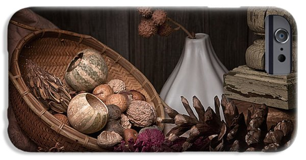 Gourd iPhone Cases - Potpourri Still Life iPhone Case by Tom Mc Nemar