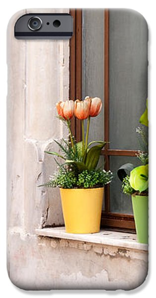 Potted Flowers 02 iPhone Case by Rick Piper Photography