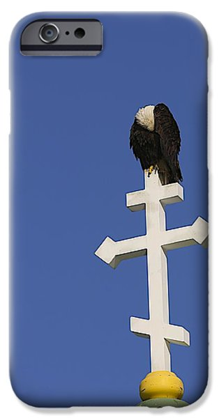 Recently Sold -  - Sea Birds iPhone Cases - Prayer time iPhone Case by Jack Molan