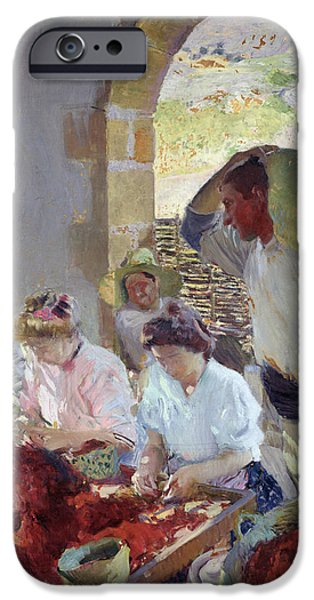 Viticulture iPhone Cases - Preparing the Dry Grapes iPhone Case by Joaquin Sorolla y Bastida