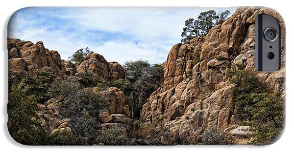 Prescott iPhone Cases - Prescott Arizona Winter Dells V iPhone Case by Lee Craig