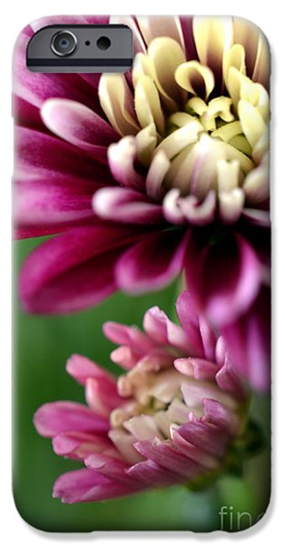 Present and Future iPhone Case by Deb Halloran