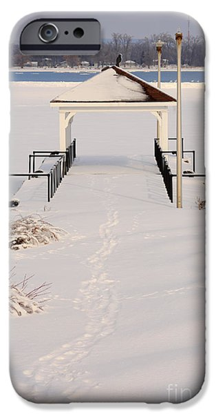 Winter Storm iPhone Cases - Presquile Provincial Park in Winter iPhone Case by Louise Heusinkveld