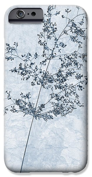 Meadow Digital iPhone Cases - Pressed Grass Cyanotype iPhone Case by John Edwards