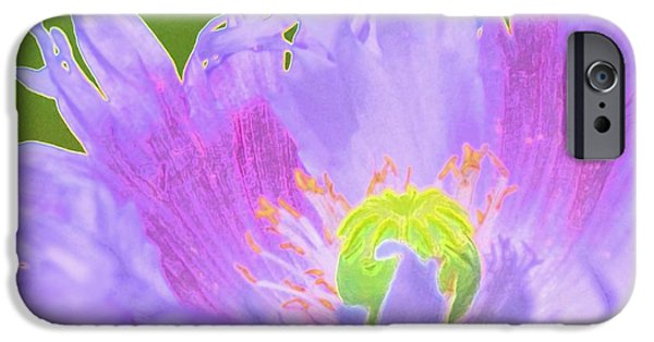 Village iPhone Cases - Pretty Poppy iPhone Case by Kathleen Struckle