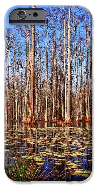 Pretty Swamp Scene iPhone Case by Susanne Van Hulst