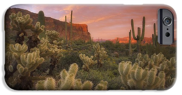 Peter Coskun iPhone Cases - Prickly Pink Peralta iPhone Case by Peter Coskun