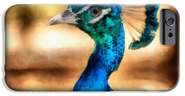 Peacock iPhone Cases - Pride iPhone Case by Ayse Deniz