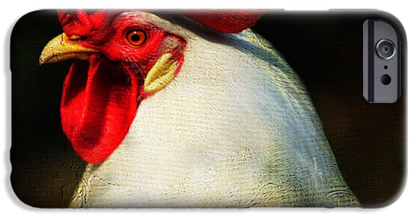 Cock iPhone Cases - Pride iPhone Case by Jenny Rainbow