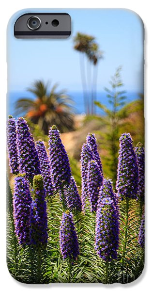 Pride of Madeira Flowers in Orange County California iPhone Case by Paul Velgos
