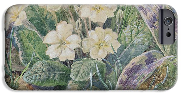 Primroses iPhone Cases - Primrose and Orchid iPhone Case by Thomas Collier