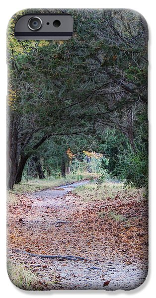 Primrose Path Ramble iPhone Case by Wendy J St Christopher