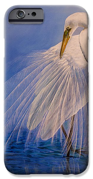 Mist iPhone Cases - Princess of the mist					 iPhone Case by Zina Stromberg