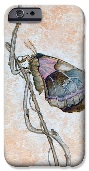 Promethea iPhone Cases - Promethea Moth iPhone Case by Katherine Miller