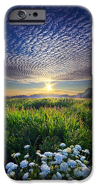 Love Laces iPhone Cases - Promise Fulfilled iPhone Case by Phil Koch