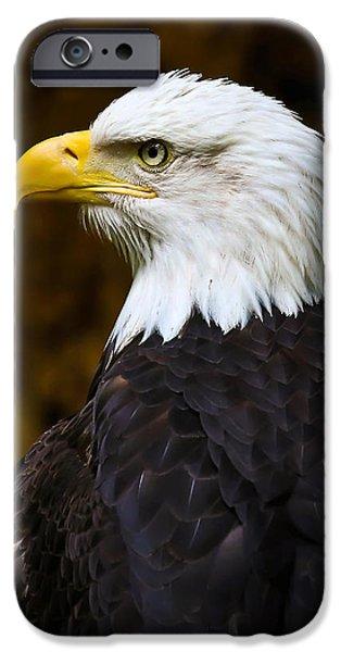 Proud Eagle Profile iPhone Case by Athena Mckinzie