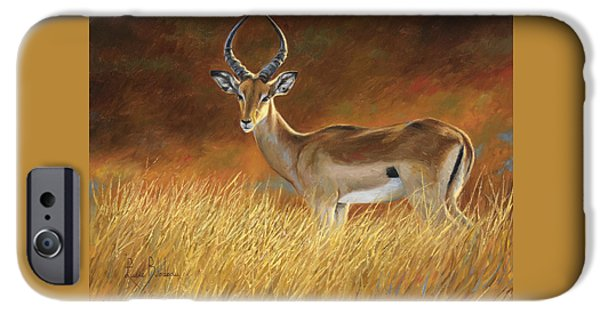 African Wildlife iPhone Cases - Proud Male iPhone Case by Lucie Bilodeau