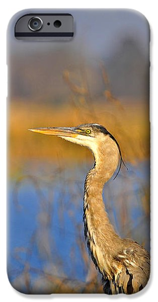 Proud Profile iPhone Case by Al Powell Photography USA