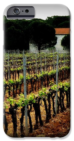 Provence Vineyard iPhone Case by Lainie Wrightson