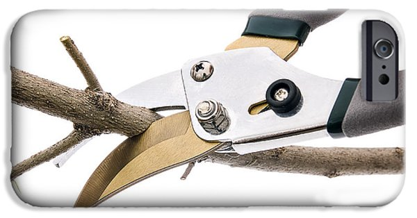 Hand Tool iPhone Cases - Prunning Shears Cutting Tree Branch iPhone Case by Donald  Erickson