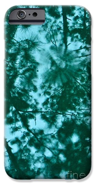 Rainy Day iPhone Cases - Puddle of Pines iPhone Case by Joy Hardee