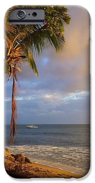 Puerto Rico Palm Lined Beach With Boat At Sunset iPhone Case by Jo Ann Tomaselli