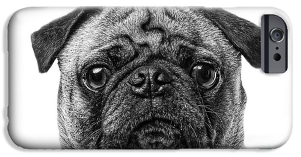 Friendly iPhone Cases - Pug Dog black and white iPhone Case by Edward Fielding