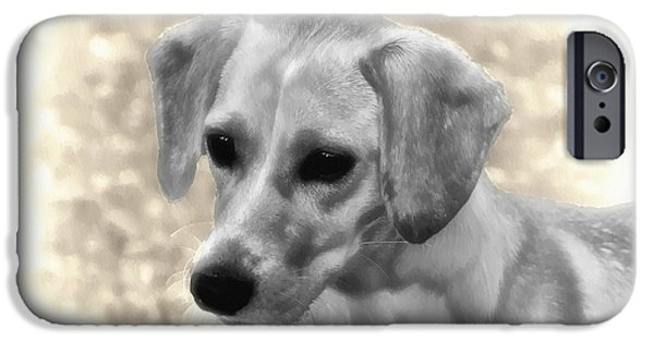 Puppy Digital Art iPhone Cases - Puggles iPhone Case by Bill Cannon