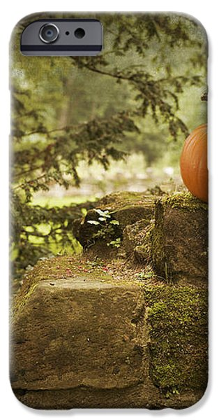 Pumpkin iPhone Case by Amanda And Christopher Elwell