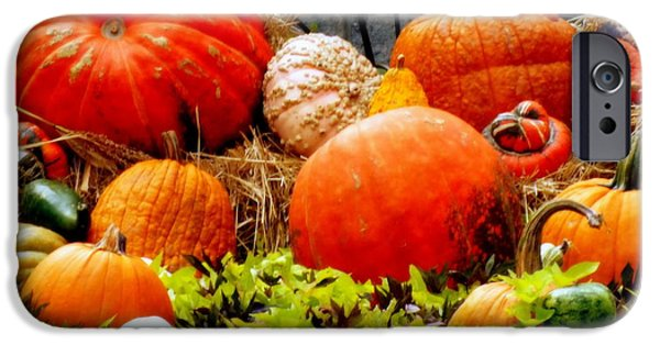 Harvest Time iPhone Cases - Pumpkin Harvest iPhone Case by Karen Wiles
