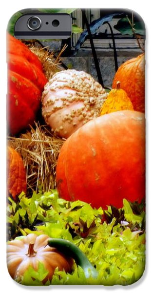 PUMPKIN HARVEST iPhone Case by KAREN WILES