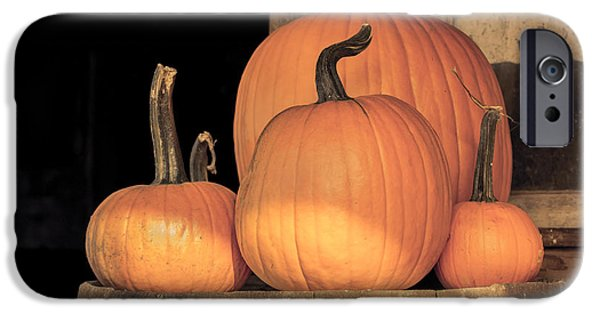 Old Barn Print Photographs iPhone Cases - Pumpkin Harvest iPhone Case by Lucid Mood
