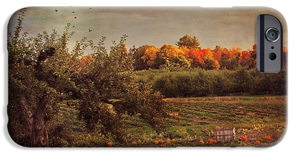 New England Autumn Scenes iPhone Cases - Pumpkin Patch in Autumn iPhone Case by Joann Vitali