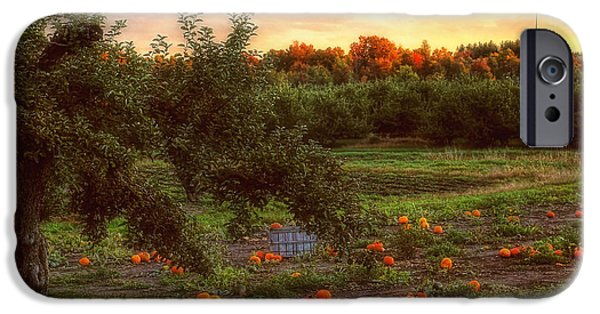 New England Autumn Scenes iPhone Cases - Pumpkin Patch iPhone Case by Joann Vitali
