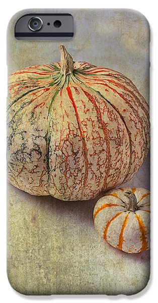 Strange iPhone Cases - Pumpkin Textures iPhone Case by Garry Gay