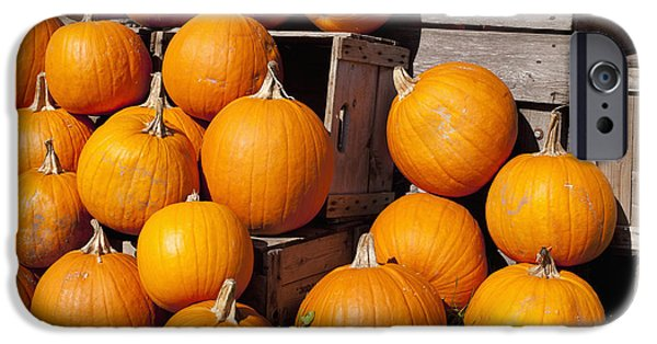 Wooden Crate iPhone Cases - Pumpkins In A Pilegranby Quebec Canada iPhone Case by David Chapman