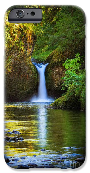North America Photographs iPhone Cases - Punchbowl Falls iPhone Case by Inge Johnsson