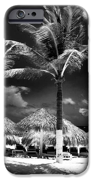 Punta Palms iPhone Case by John Rizzuto