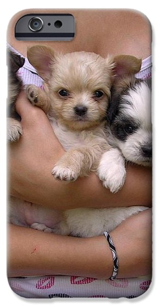 Puppies in Maria's arms iPhone Case by John Lautermilch